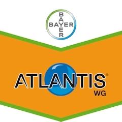 Atlantis Wg